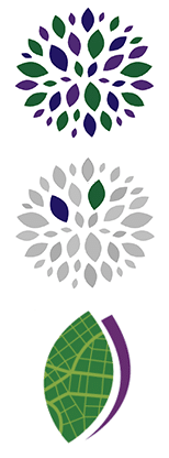 client-story_crowd-academy_logo-progression